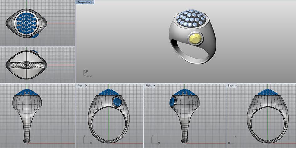 Rhinoceros Jewelry Design Software